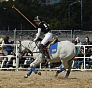 Chicago Polo