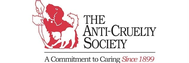 Fashionable Fundraising for the Anti-Cruelty Society