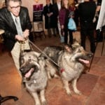 Development Board member and Animal Magnetism Sponsor Pat Welch with Willow & Taz - Photo by Sparenga Photography