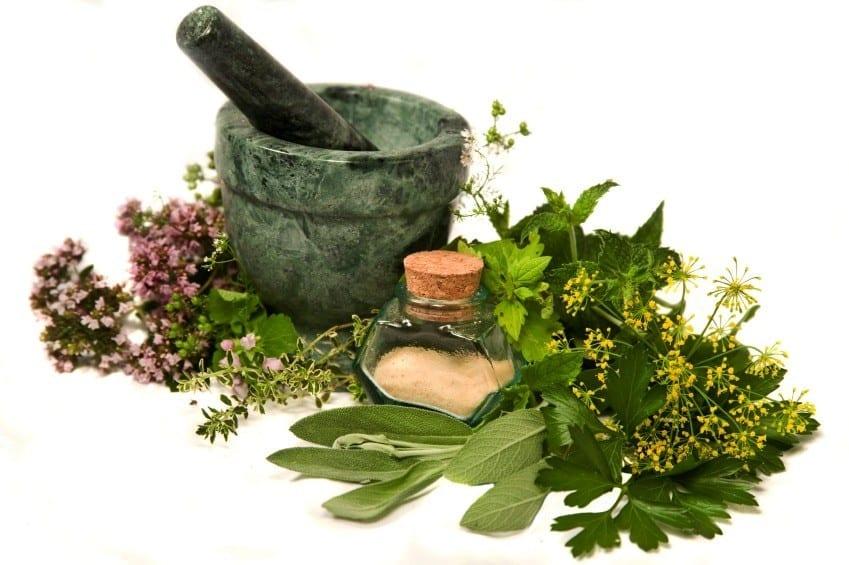 Anti-Aging Skin Health