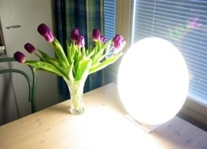 LightTherapy_Lamp