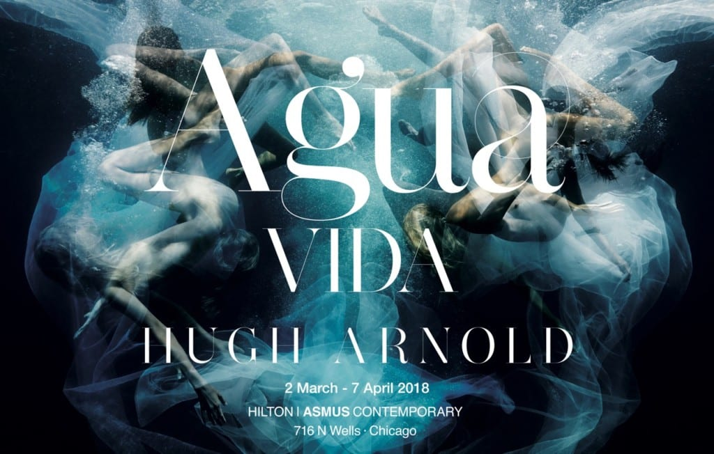 Hugh Arnold - Agua Vida at the Hilton Asmus Contemporary Art Gallery.