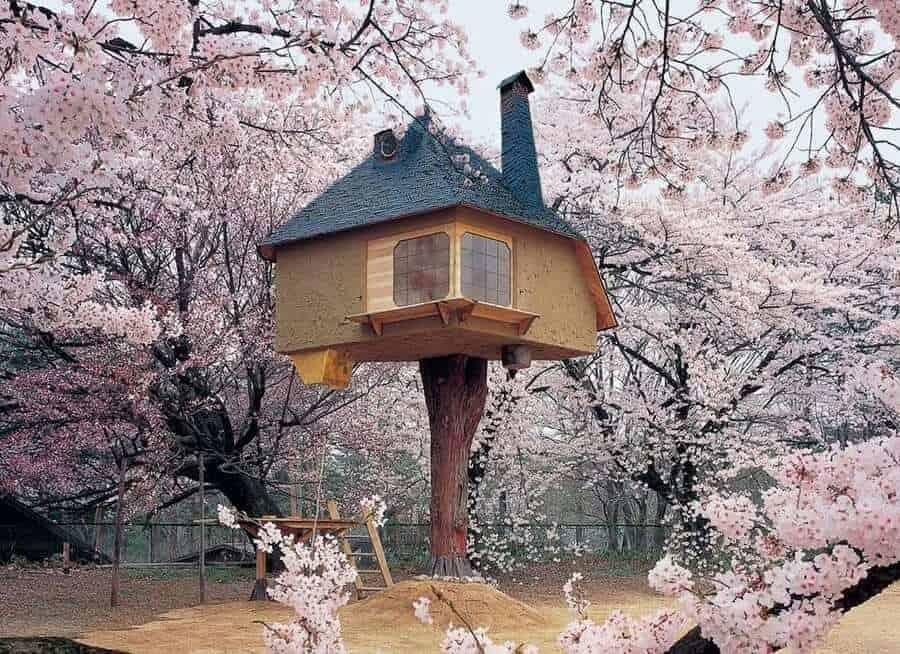 Terunobu Fujimori built fairy tale-like treehouse among cherry blossoms in Japan