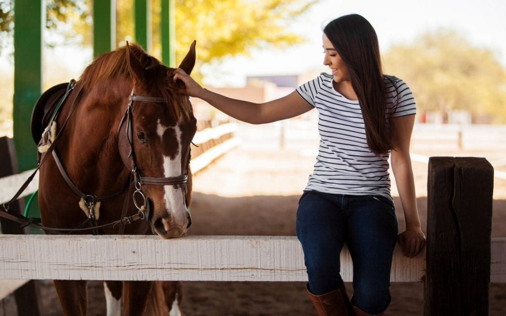 Equine Therapy Heroes
