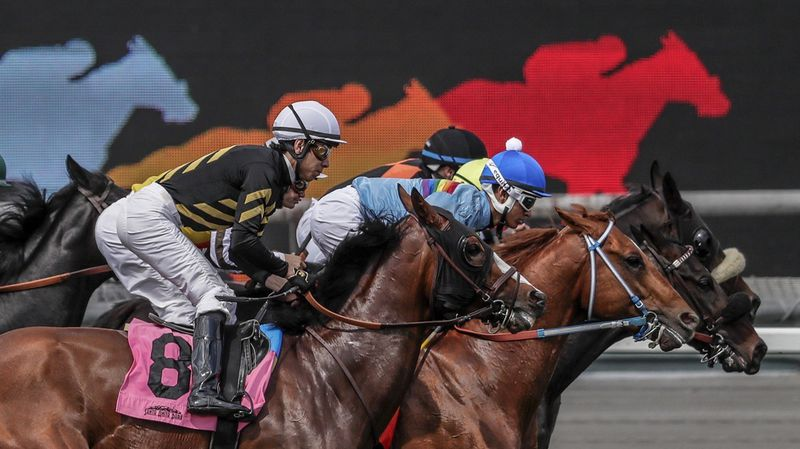 Another horse dies at Santa Anita; 26 thoroughbreds have died at the track since Dec. 26