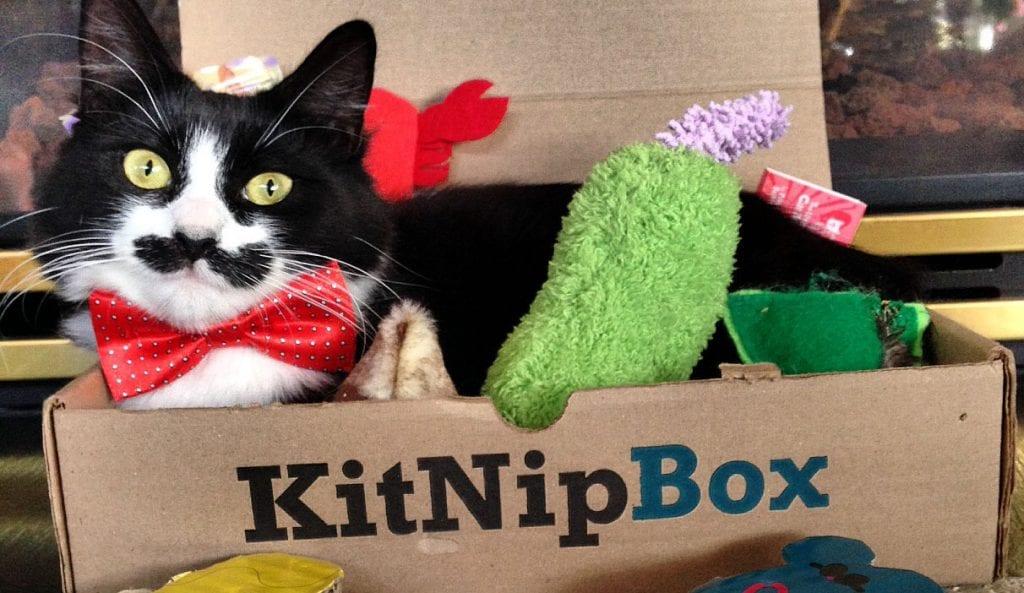 Pet Subscription Boxes