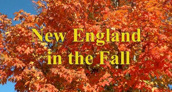Fall Foliage New England Guide