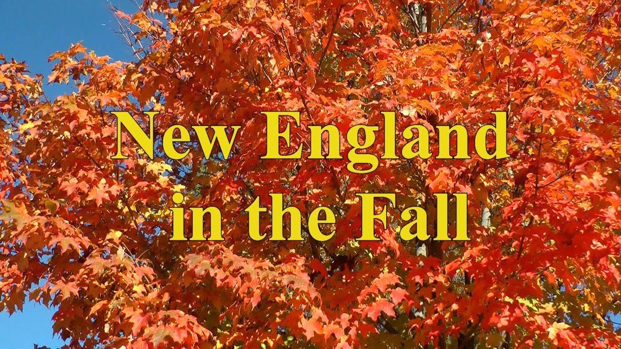 Fall Foliage New England Guide